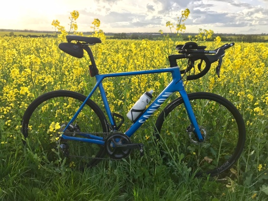 canyon bike in rape field